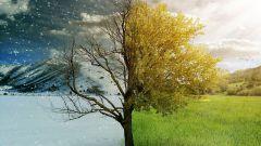 Как происходит смена времен года на Земле