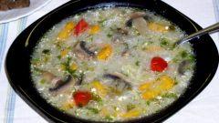 Перловый суп со свежими грибами