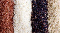 Какие сорта риса существуют