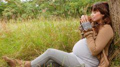 Какое успокоительное можно пить во время беременности