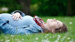 Как на ранних сроках диагностировать беременность