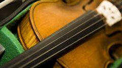 Какие инструменты есть в камерном оркестре