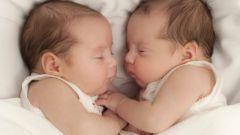 Как узнать, что беременна двойней