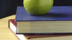 Какие документы относятся к информационно-справочным