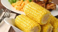 Как сварить кукурузу в початках