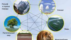Как меняются природные комплексы