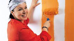 Как грунтовать стены перед покраской