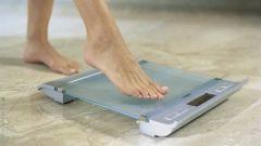 Какие напольные весы лучше - электронные или механические