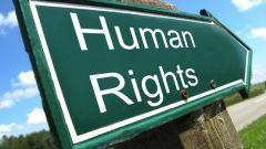 Какие обязанности и права гражданина прописаны в конституции