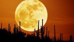 Как красиво сфотографировать Луну