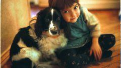 Младенцы и питомцы: 7 советов совместного проживания
