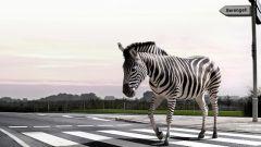 Какие существуют виды пешеходных переходов