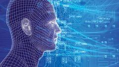 Сознание как общественный феномен