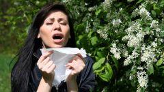 Как защититься от аллергии
