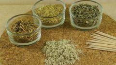 Какая трава помогает от паразитов