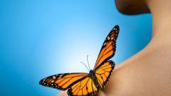 Что значит поцелуй бабочки