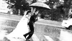 Форс-мажор на свадьбе - что делать