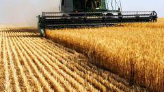 Как меняется специализация сельского хозяйства на территории России