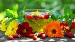 Какие травяные завары улучшают кровообращение