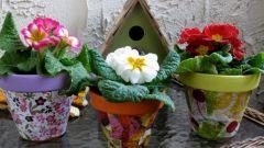 Как украсить горшок для цветов