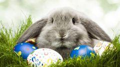 Как красить яйца подручными средствами