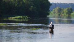 Как рыбачить в проточной реке