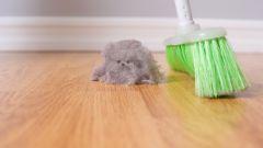 Чем опасна домашняя пыль и как от нее избавиться