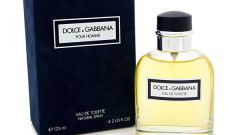 Особенности духов  Dolce Gabbana