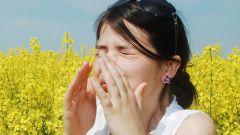 Чем лечить сезонную аллергию?