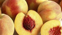 Персиковый ликер: рецепты приготовления
