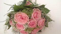 Розовая роза и ее символизм