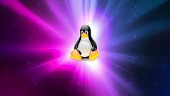 Почему символом операционной системы Linux является пингвин