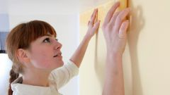 Грунтовка стен обойным клеем - нужно ли ждать, когда высохнет?