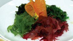 Морские водоросли: их разновидности и применение