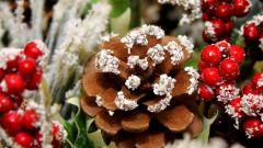 Что принято готовить на Рождество в разных странах