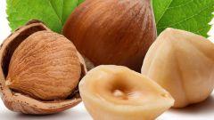 Фундук: калорийность и польза