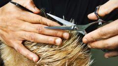 Как часто нужно стричь волосы, чтобы они росли быстрей