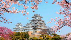 Сколько стоит поехать в Японию в 2018 году