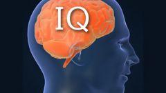 Насколько объективен тест IQ