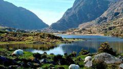 Отдых в Ирландии: неповторимая красота природы