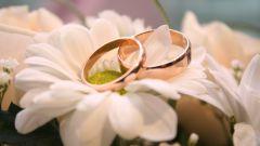 Как отпраздновать годовщину свадьбы