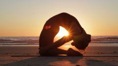 Хатха-йога для копирайтеров: избранные асаны