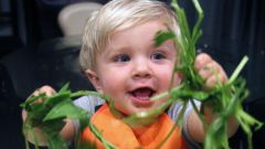 Симптомы пищевого отравления у ребенка до 2-х лет