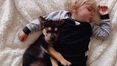 Сколько времени должен спать 2-х летний ребенок
