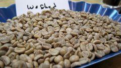 Из чего делают зеленый кофе