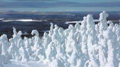 Сколько есть видов снега