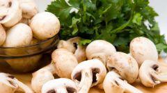 Рецепты блюд из шампиньонов: вкусно и недорого
