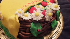 How to make decoration for cake: flowers of mastic