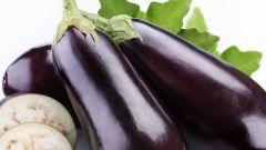 Как приготовить несложные блюда из кабачка и баклажана