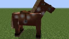 Что едят лошади в майнкрафт